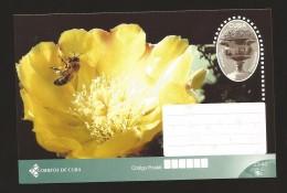 B)2015 CUBA-CARIBE, SCULPTURE,  NATURE, ANIMAL, FLOWER, BEE, POSTAL STATIONARY - Kuba