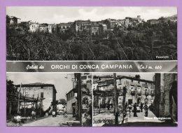 Saluti Da Orchi Di Conca Campania - Caserta