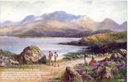 VALENTINES ART - 6 DIFFERENT IRISH CARDS - Postcards