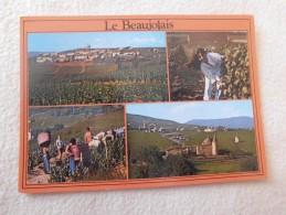 LE BEAUJOLAIS..MULTI VUES ...FLEURIE...CERCIE ET VENDANGEURS ... - France
