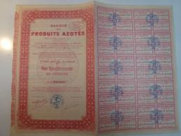 Action Sociéte Des Produits Azotés - Industrie