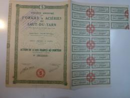 Action Forges Et Aciéries Du Saut Du Tarn - Industrie