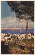 Espagne - Islas Baleares - Mallorca - Palma Desde La Bovanova - Mallorca