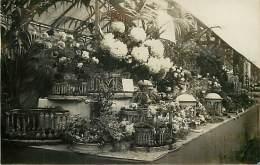 - Themes Divers -ref-M820- Fleurs - Horticulture - Carte Photo Exposition Chrysanthemes - Horticulteur - Metiers - - Fleurs
