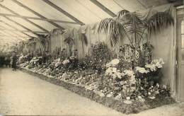 - Themes Divers -ref-M801- Fleurs -fleur - Carte Photo Exposition Fleurs Diverses - Horticulture - Metiers - - Fleurs