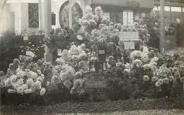 - Themes Divers -ref-M800- Fleurs -fleur - Carte Photo Exposition Chrysanthemes Hors Concours - Chrysantheme - - Fleurs