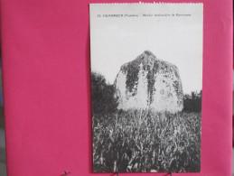 29 - Penmarch - Menhir Lenticulaire De Kerscaven - Scans Recto-verso - Penmarch