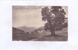 824.  -  LES  GETS  (Hte-Savoie).  -  Le  Gros  Chêne - Les Gets
