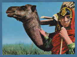 214603 / BEAUTIFUL NOMAD  NOMADE GIRL  With Animal Camel , Photo ASEFI , KABUL PHOTO HOUSE , Afghanistan - Afghanistan