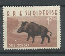 1962 MNH Albania Wild Boar,  Postfris** - Francobolli