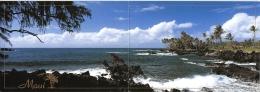 "HAWAI   CARTE DOUBLE  ""JOHN WAGNER COLLECTION"" - Etats-Unis"