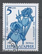Bulgaria 1985, Scott #3106 Flower: Iris Germanica (U) - Bulgarie