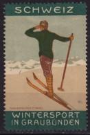 Ski Skiing - Schweiz Switzerland Graubünden - Ed. Basel - Label / Vignette / Cinderella - MH - Ski