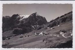 Allières, Vue Générale - FR Fribourg