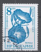 Bulgaria 1986, Scott #3184 Flower: Opomoea Tricolor (U) - Bulgarie