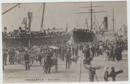 FREMANTLE (AUSTRALIE) - THE HARF - Fremantle