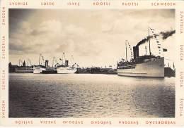FERRIES - FERRY BOAT : 3 Ferry-boats SUEDOIS Et Un ALLEMAND Port De TRÄLLEBORG Sweden Sverige Suède - CPSM GF Boat Ship - Ferries