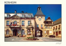 ROSHEIM (67, Bas-Rhin) : Place, Hôtel De Ville, Zuem Zittgloeckel (non Circulée, Neuve) - France