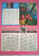CALENDARIETTO 1990 SANTUARIO S.GIUSEPPE DA COPERTINO OSIMO - Calendari