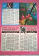 CALENDARIETTO 1990 SANTUARIO S.GIUSEPPE DA COPERTINO OSIMO - Formato Grande : 1981-90