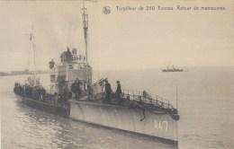 Torpilleur  De 250 Tonnes - Retour De Manoeuvres - Krieg