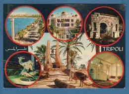 214702 / TRIPOLI -  Water Well MAN Cattle , PALACE , STATUE NUDE WOMAN Gazelle  , Libia Libya Libyen Libye Libie - Libia
