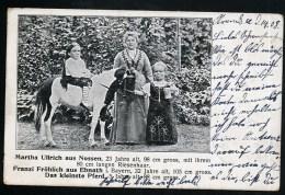 AK/CP Variete  Zirkus  Kleine Frauen  Mini Pferd  Nossen  Ebnath    Gel./circ. 1908    Erhaltung/Cond. 2-     Nr. 8555 - Circus