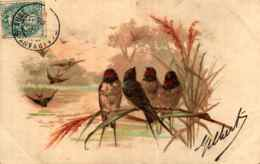 Hirondelle 18, 4 Sur Branche Bord D'eau - Birds