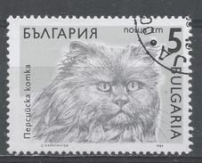 Bulgaria 1989, Scott #3510 Cats: Persian (U) - Bulgarie