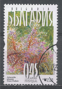 Bulgaria 2007. Scott #4446 (U) Flower, Astracantha Aitosensis - Bulgarie