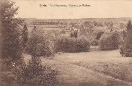 Libin - Les Fauvettes, Château Du Buchay (Edition Belge) - Libin