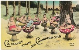 Surrealisme  Champignons Mushrooms Multi Bébé Repopulation ça Pousse Comme Des Champignons - Before 1900