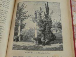 Sevilla Alcazar Spain Engraving Print 1895 - Estampas & Grabados