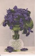 AK Vase Mit Veilchen - 1909 (23676) - Blumen