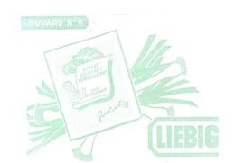 Buvard LIEBIG Buvard N°9 Potage Poireaux Pommes De Terre Pour 4 Personnes - Sopas & Salsas