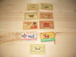 Lucifer Etiketten Thema Paarden 9 St - Zündholzschachteletiketten