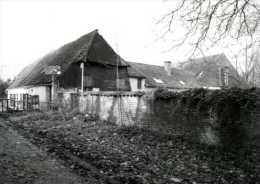 ERPE - Erpe-Mere (O.Vl.) - Molen/moulin - Historische Opname (1992) Van De Cottemmolen Vóór De Restauratie - Erpe-Mere