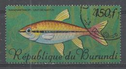 Burundi 1967. Scott #201 (U) Tropical Fish - Burundi