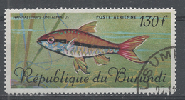 Burundi 1967. Scott #C54 (U) Tropical Fish - 1962-69: Oblitérés