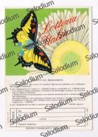 Lotteria Italia - FARFALLA BUTTERFLY - Rai - Cartoline
