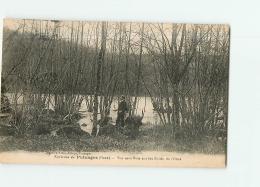 Environs De Putanges : Vue Sous Bois Sur Les Bords De L'Orne . 2 Scans. Edition Lizot - Unclassified