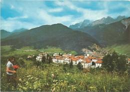R1030 Lorenzago Di Cadore (Belluno) - Panorama Dai Campi / Non Viaggiata - Altre Città