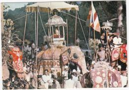 Kandy Perahera - Colourful Procession Held Annually In July/august - OLIFANT / ELEPHANT -  (Sri Lanka) - Sri Lanka (Ceylon)