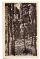 0-8305 RATHEN, Rauenstein, Sächsische Schweiz, 1953 - Rathen