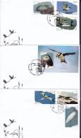 2016-FDC-30 CUBA 2016 MNH FDC. AVES ACUATICAS. SEA BIRD PAJAROS. - FDC