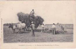 VIGNEUX - La Rentrée  Des Récoltes Dans La Plaine - Charrette Tirée Par Des Boeufs - Animé - Vigneux Sur Seine