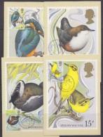 Great Britain 1980 Wild Birds 4v 4 Maxicards (30968) - Maximumkaarten