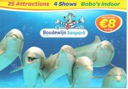 Dolfijnen Dauphins Delphines  Boudewijn Seapark   Brugge Bruges  Reclame Publicité - Animali