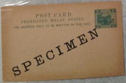 Tiger,wild Animal,malaysia,Specimen Postal Stationery - Big Cats (cats Of Prey)