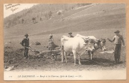 BELLE C.P.A Précurseur - LE DAUPHINE -- Boeufs à La Charrue, (prés De Lans) - ATTELAGE De BOEUFS - BOEUF - CHARRUE - Frankreich